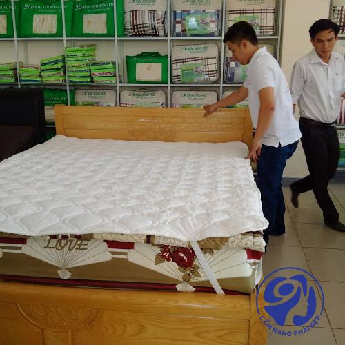 Nệm cao su Đồng Phú