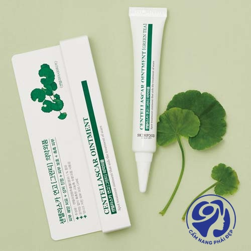 Skinfood Centellascar Ointment Green Tea