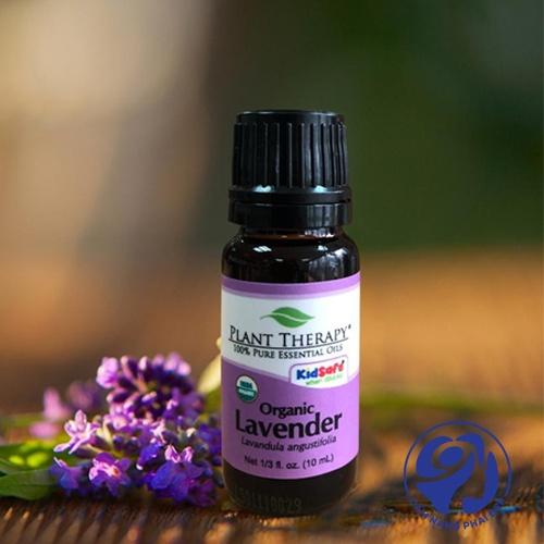 Organic Lavender của Plant Therapy