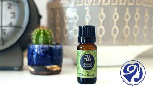 Lemon Tea Tree Essential Oil của Edens garden