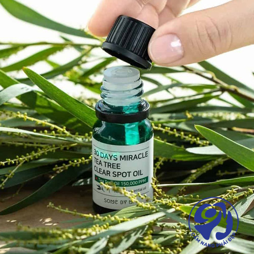 30 Days Miracle Tea tree Clear Spot Oil của Some By Mi