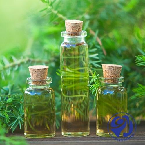 Tinh dầu trị mụn là gì? Có những loại nào?