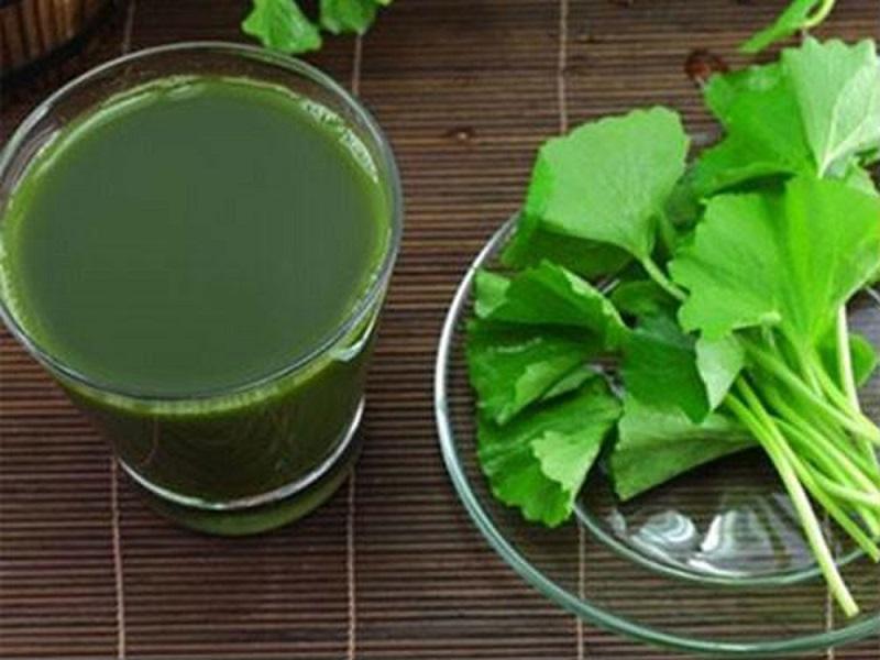 cách trị sẹo rỗ từ rau má