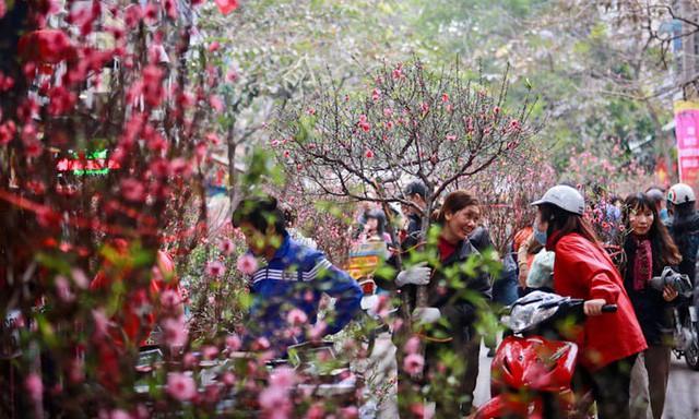 Những bài thơ hay nhất của Tú Xương - tiêu biểu trong thơ ca Việt Nam