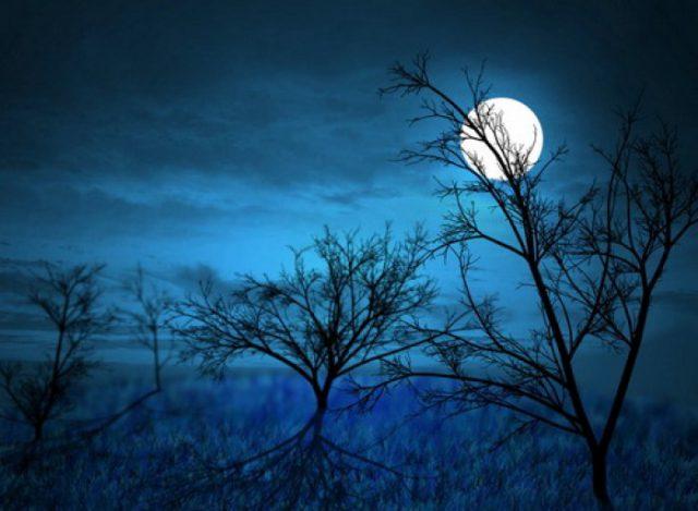 Những bài thơ hay của Xuân Quỳnh êm dịu và lắng đọng
