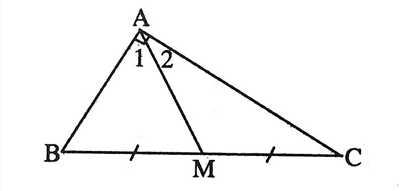 đường trung tuyến trong tam giác vuông